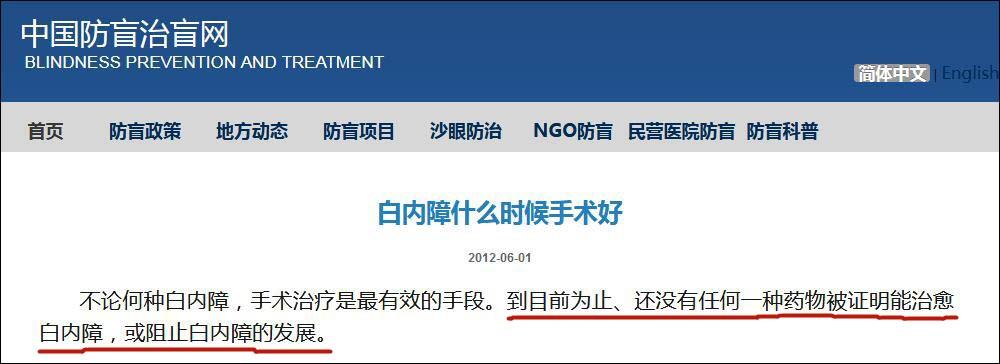 中国防盲治盲网截图